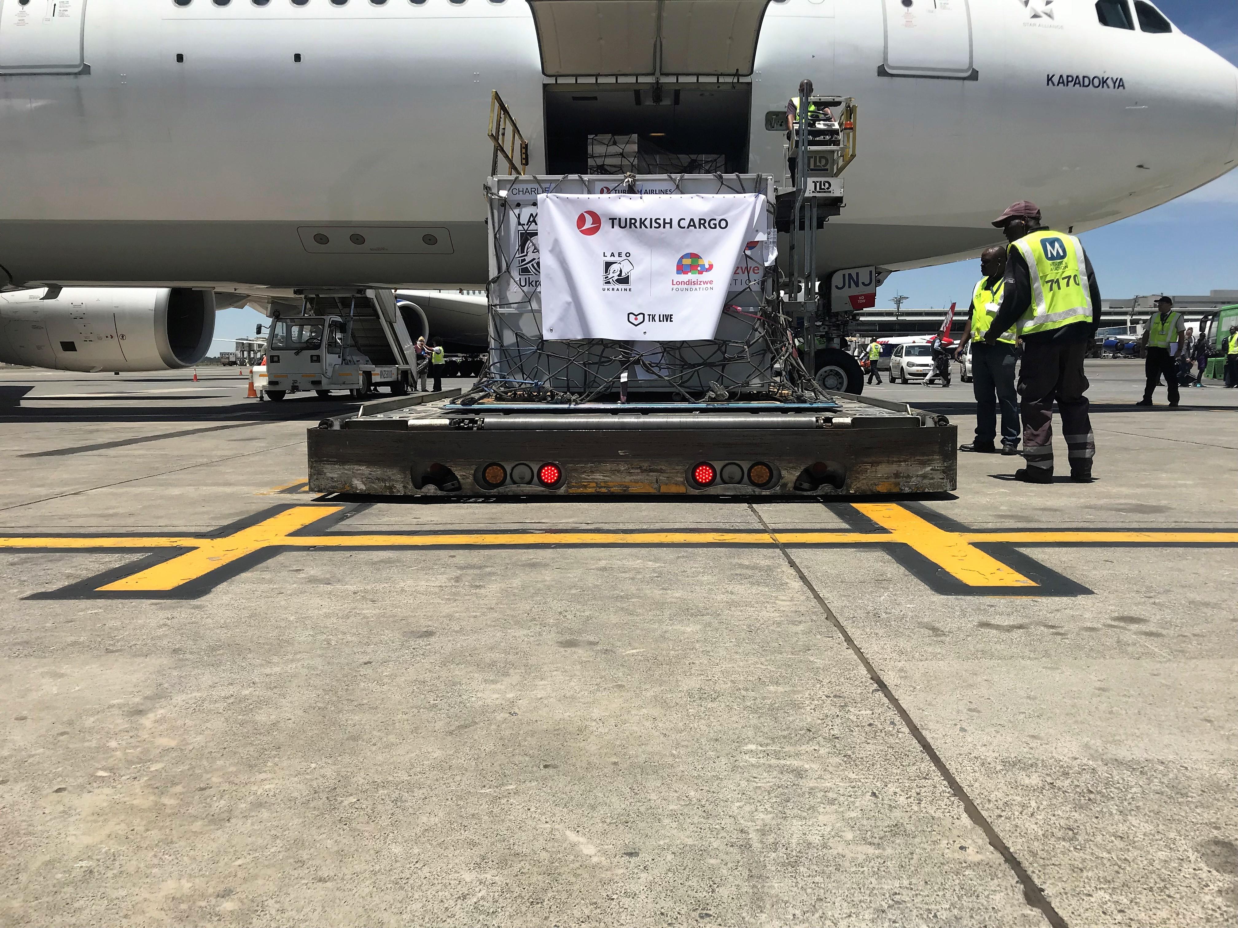 Turkish Cargo devuelve a tres leonas